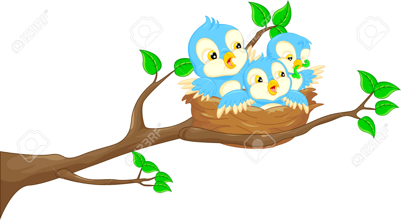 1300x712 Baby Birds In Nest Clipart Spring Bird Pencil And Color