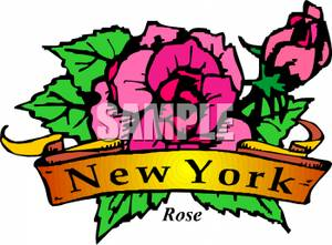 300x221 The State Flower Of New York, The Rose Clipart Picture