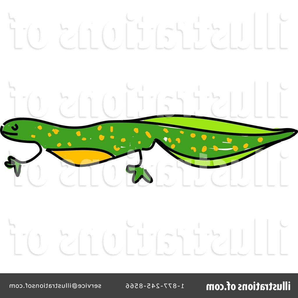 1024x1024 Newt Clipart Reptile Many Interesting Cliparts