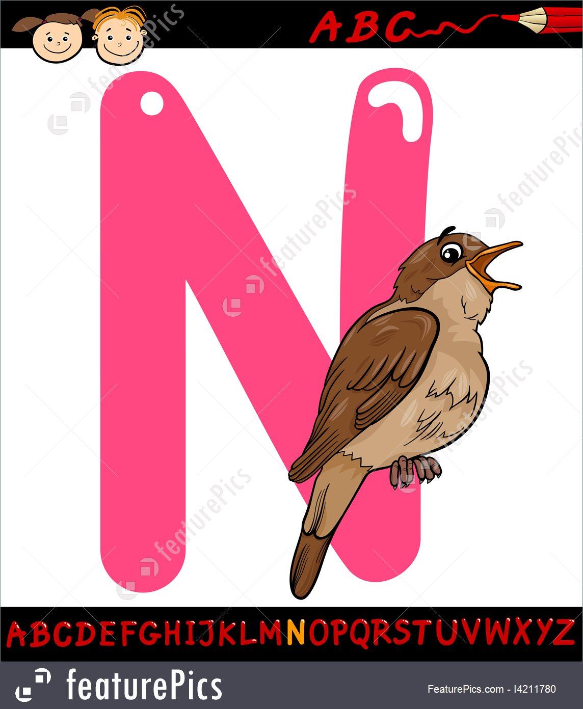 1144x1392 Letter N For Nightingale Cartoon Illustration