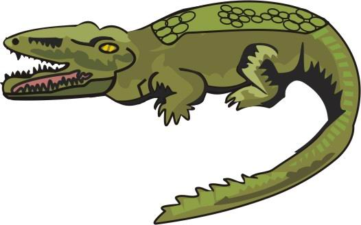 526x328 Collection Of Crocodile Drawing Color High Quality, Free