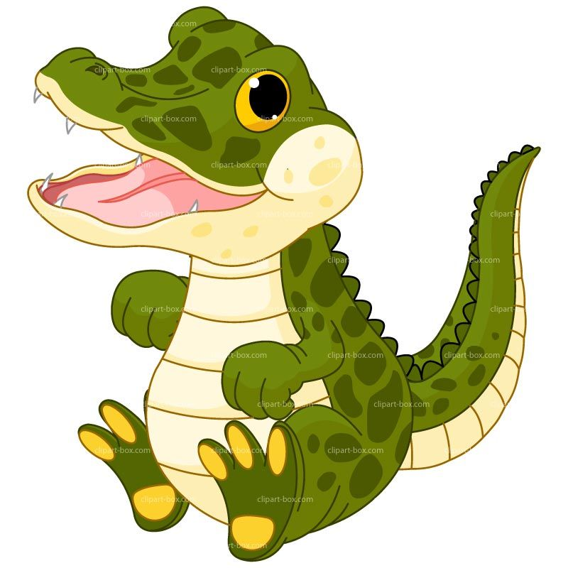 800x800 Clipart Baby Alligator Royalty Free Vector Design Vector