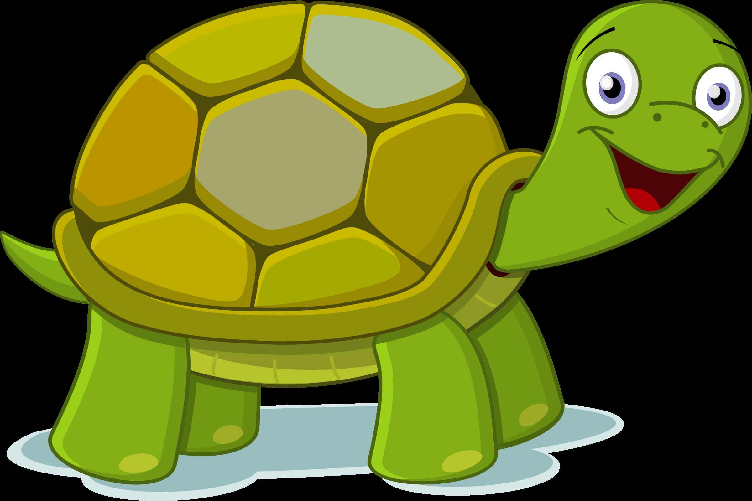 ninja turtle clipart at getdrawings com free for personal use rh getdrawings com turtle clip art cartoon turtle clip art cartoon