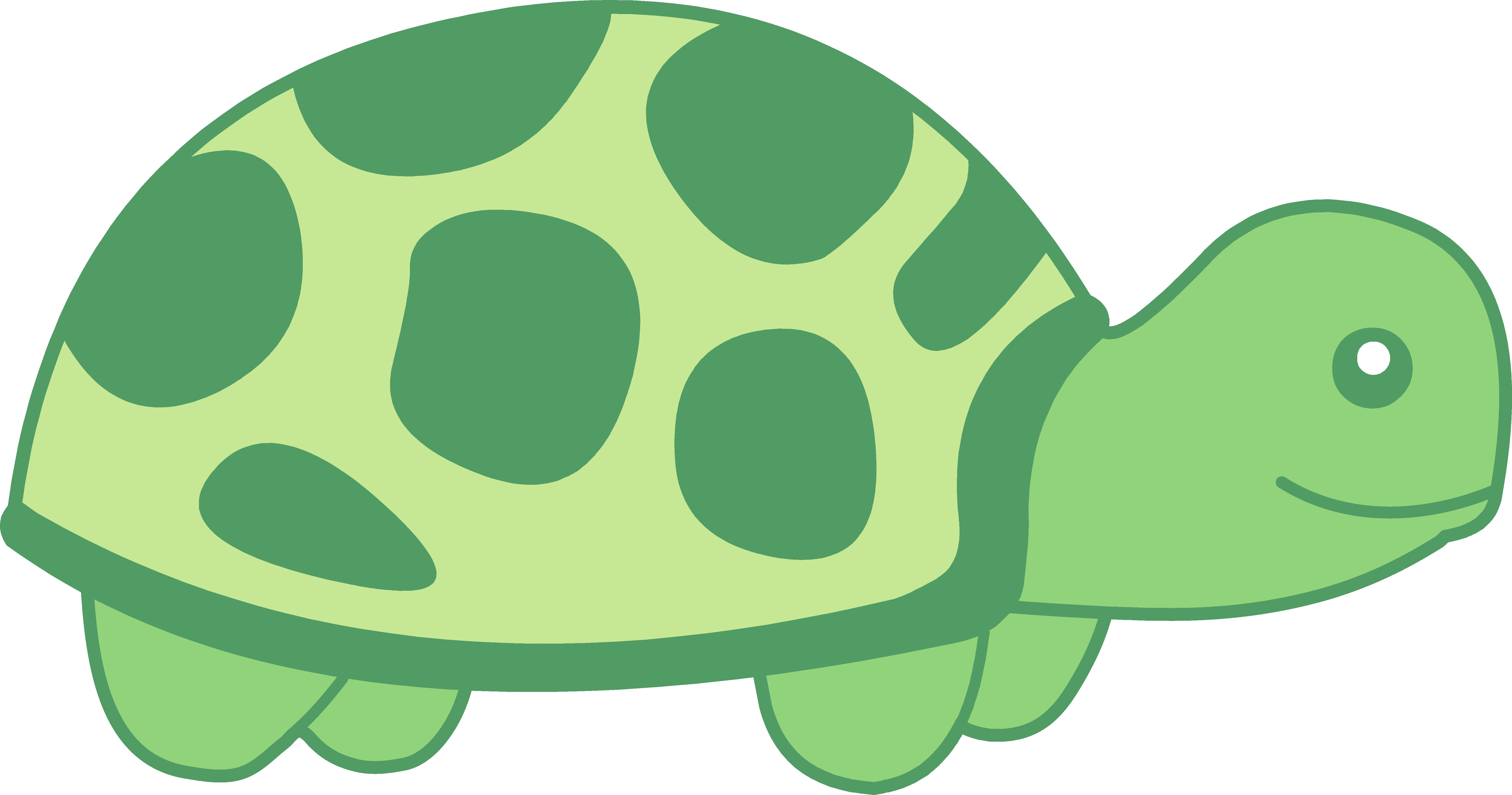 6352x3339 Turtle Clipart Png