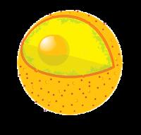 Nucleus Clipart