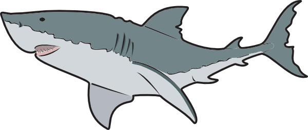 600x254 Great White Shark Clipart