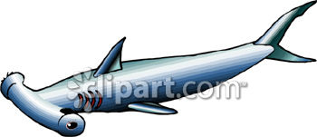350x151 Hammerhead Shark Clipart Picture