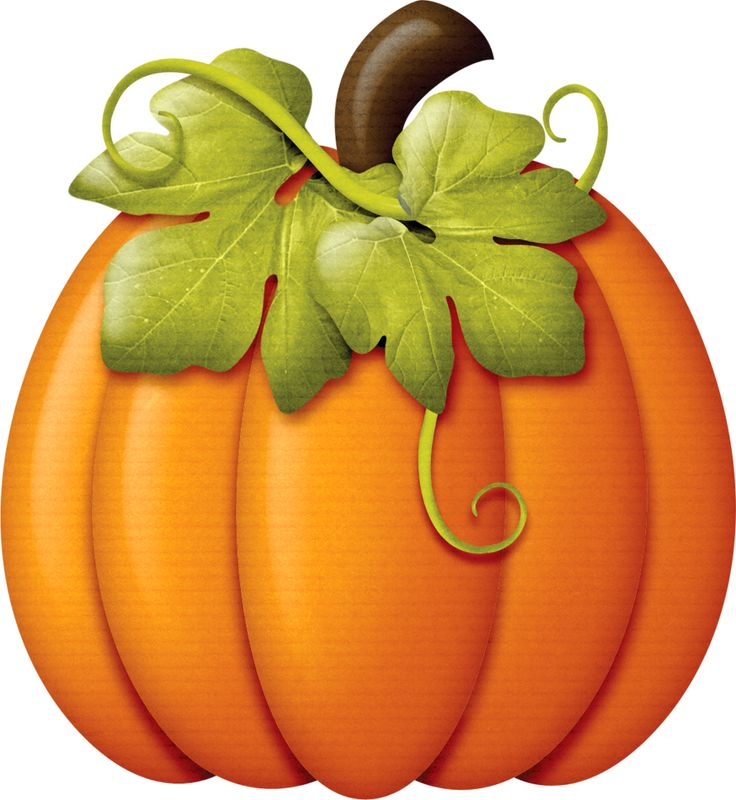 736x800 Colored Pumpkin Clipart