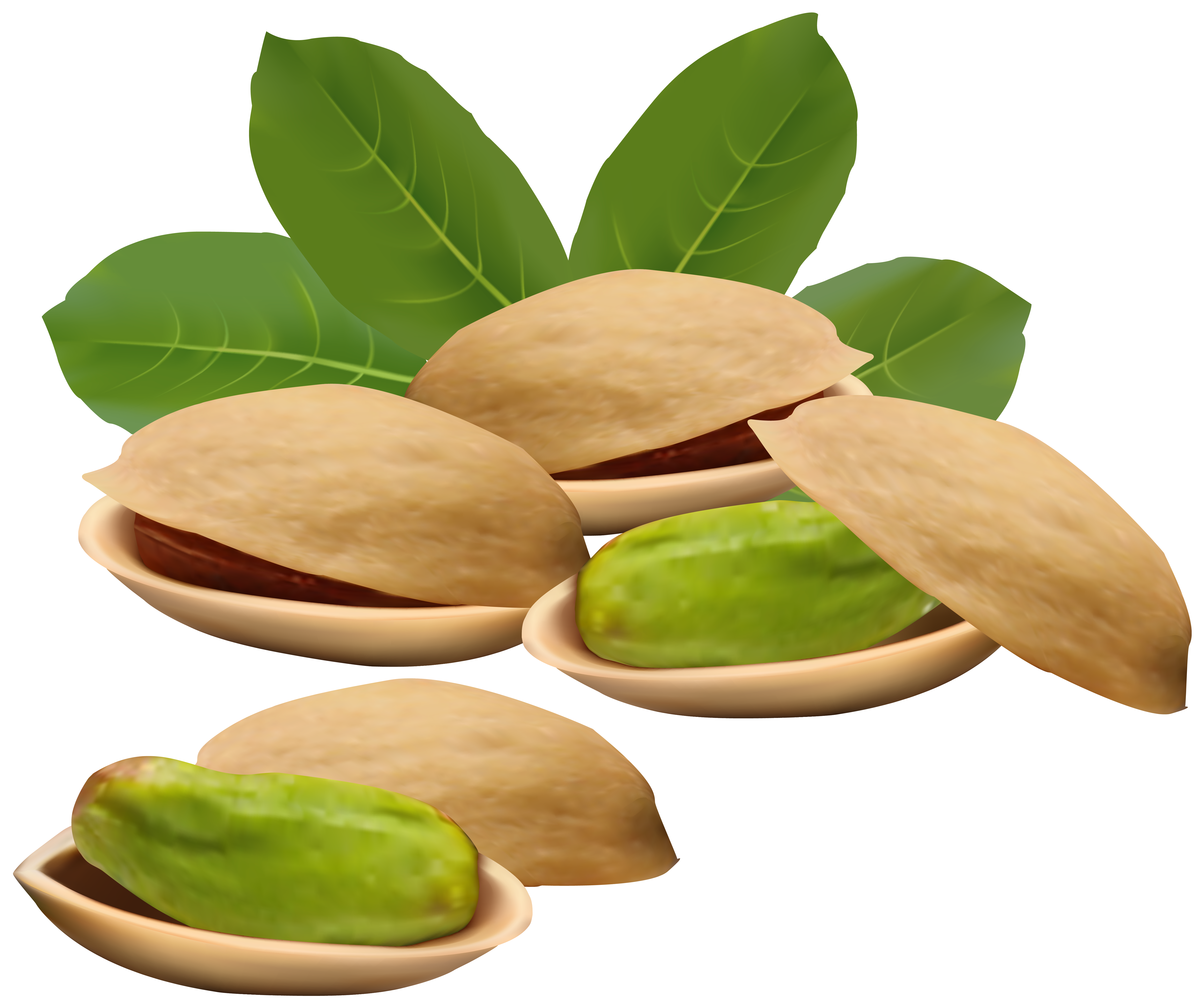 5856x4898 Pistachio Nuts Png Clipart Imageu200b Gallery Yopriceville