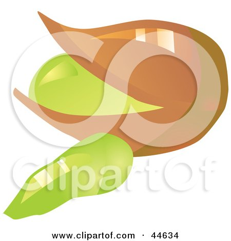 450x470 Royalty Free (Rf) Clipart Of Pistachio Nuts, Illustrations, Vector