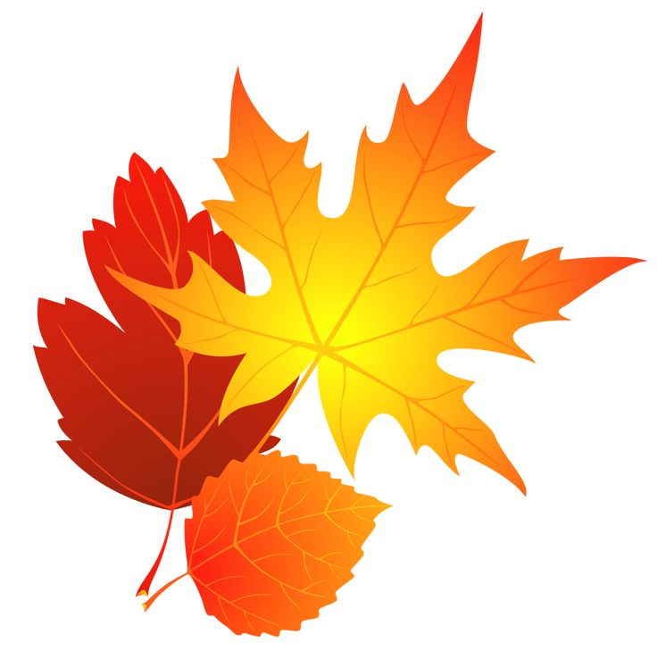 736x729 Turning Leaves Clipart