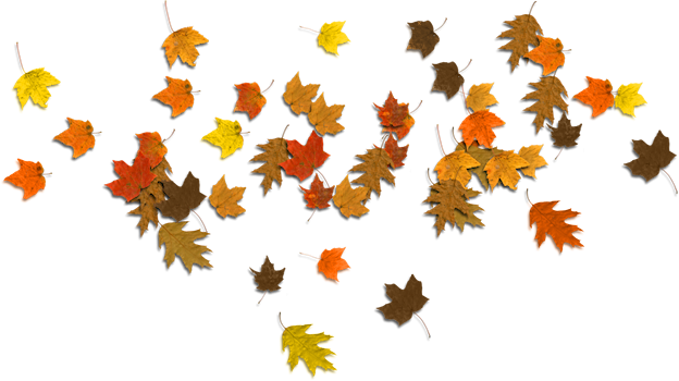 Oak Leaves Clipart