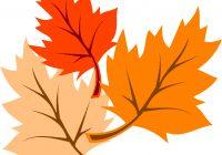 200x140 Leaf Clip Art Free Fall Leaf Template Oak Leaf Outline Clip Art