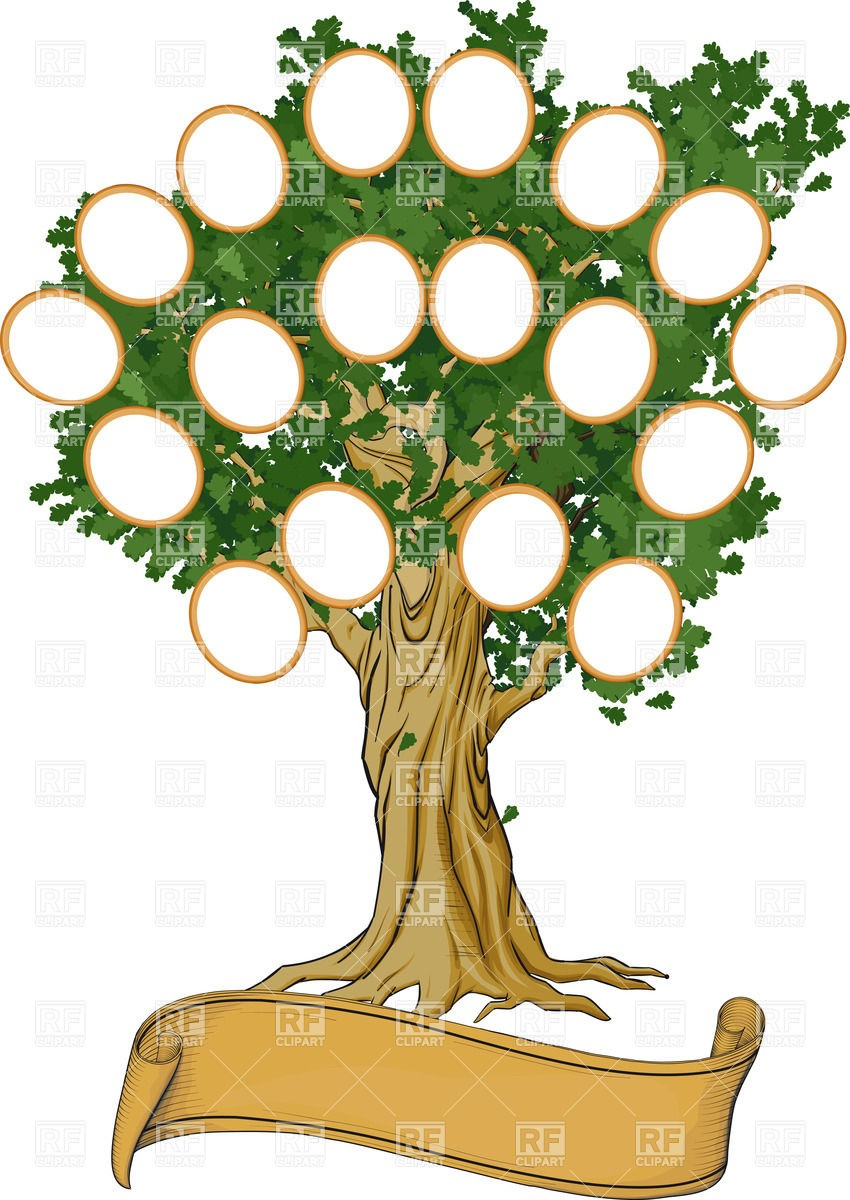 Oak Tree Clipart At Getdrawings Com Free For Personal Use Oak Tree