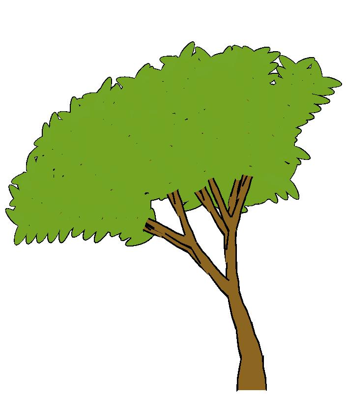 704x813 TREE CARTOON PNG Free Download Clip Art Free Clip Art on