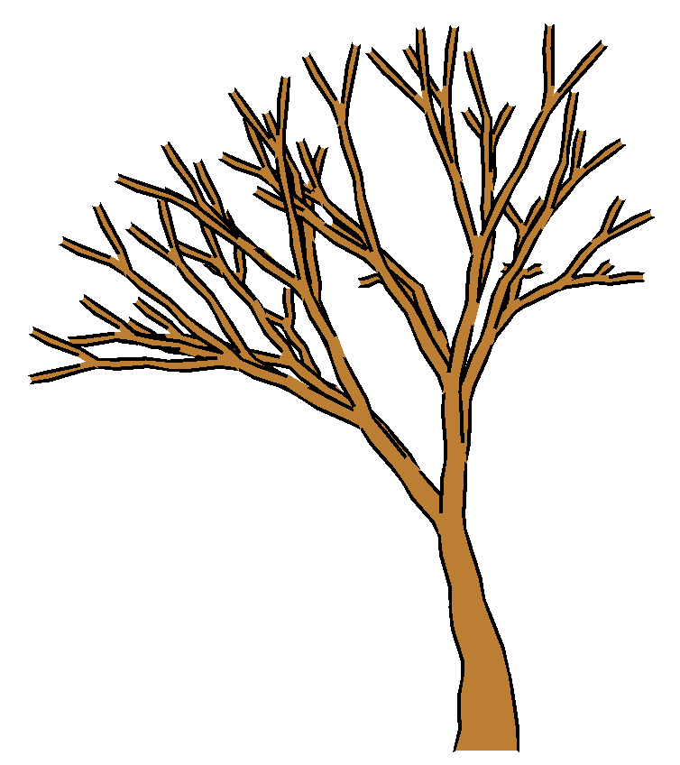 754x848 Tree Clipart No Leaves 101 Clip Art