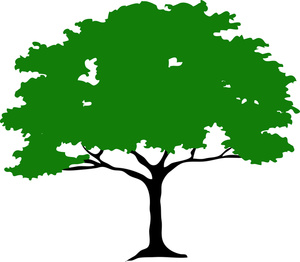 300x262 African Tree Clipart 101 Clip Art