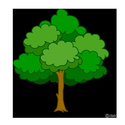 400x400 fresh pine tree logo clip art