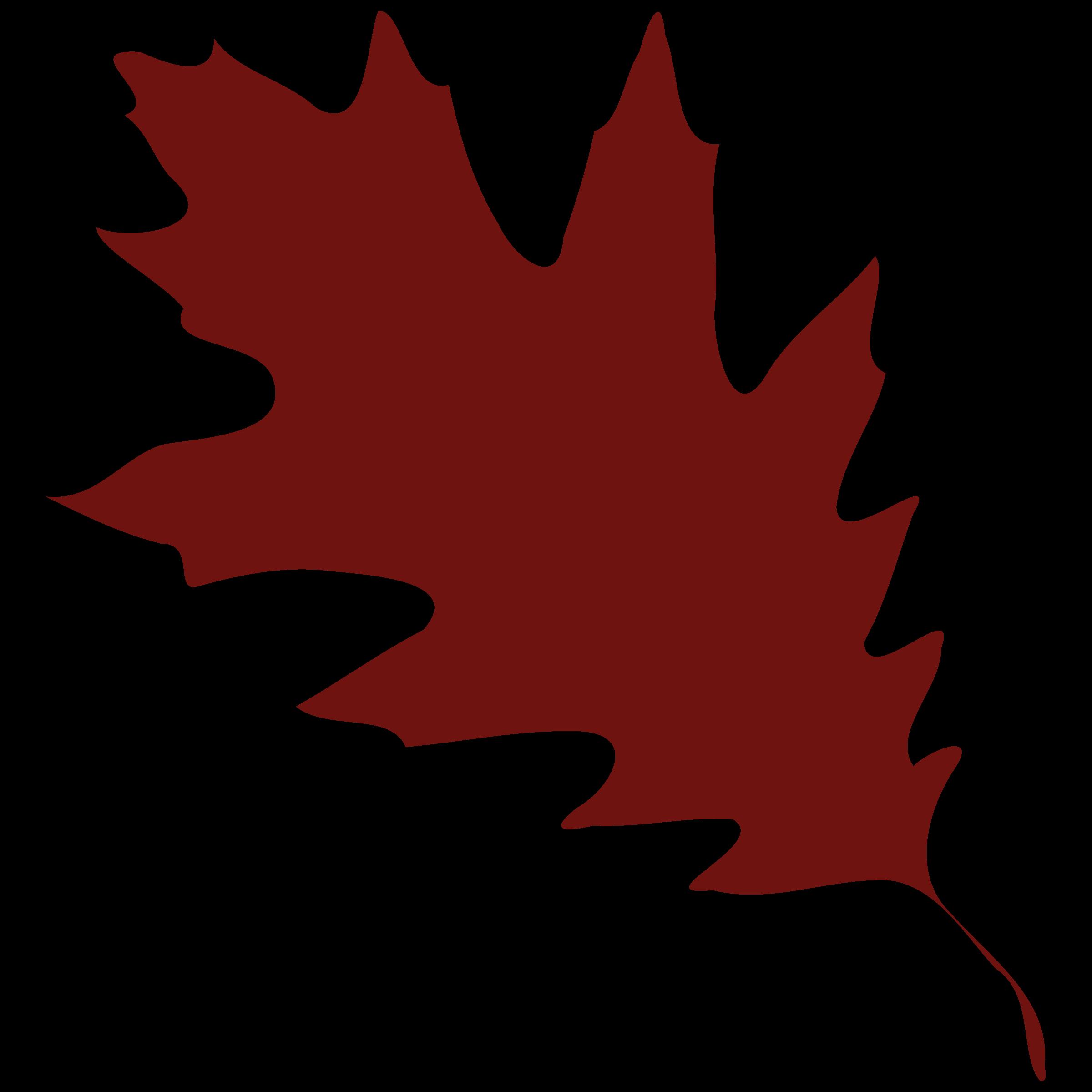 2400x2400 Fall Leaves Clip Art