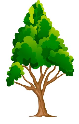 322x500 Pictures And Clipart Of Trees