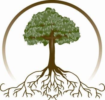 351x336 Deluxe Oak Tree Clip Art Trees