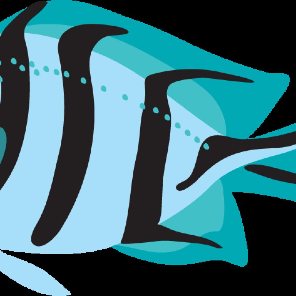 1024x1024 Fish Clipart Cow Clipart
