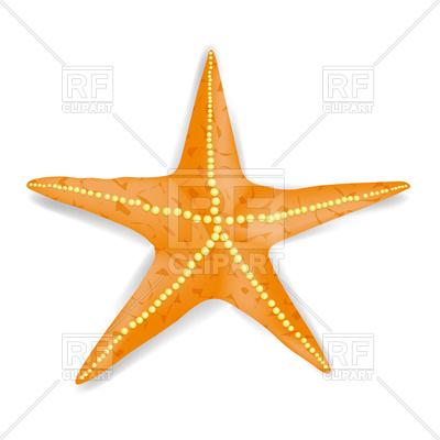 400x400 Orange Starfish Royalty Free Vector Clip Art Image