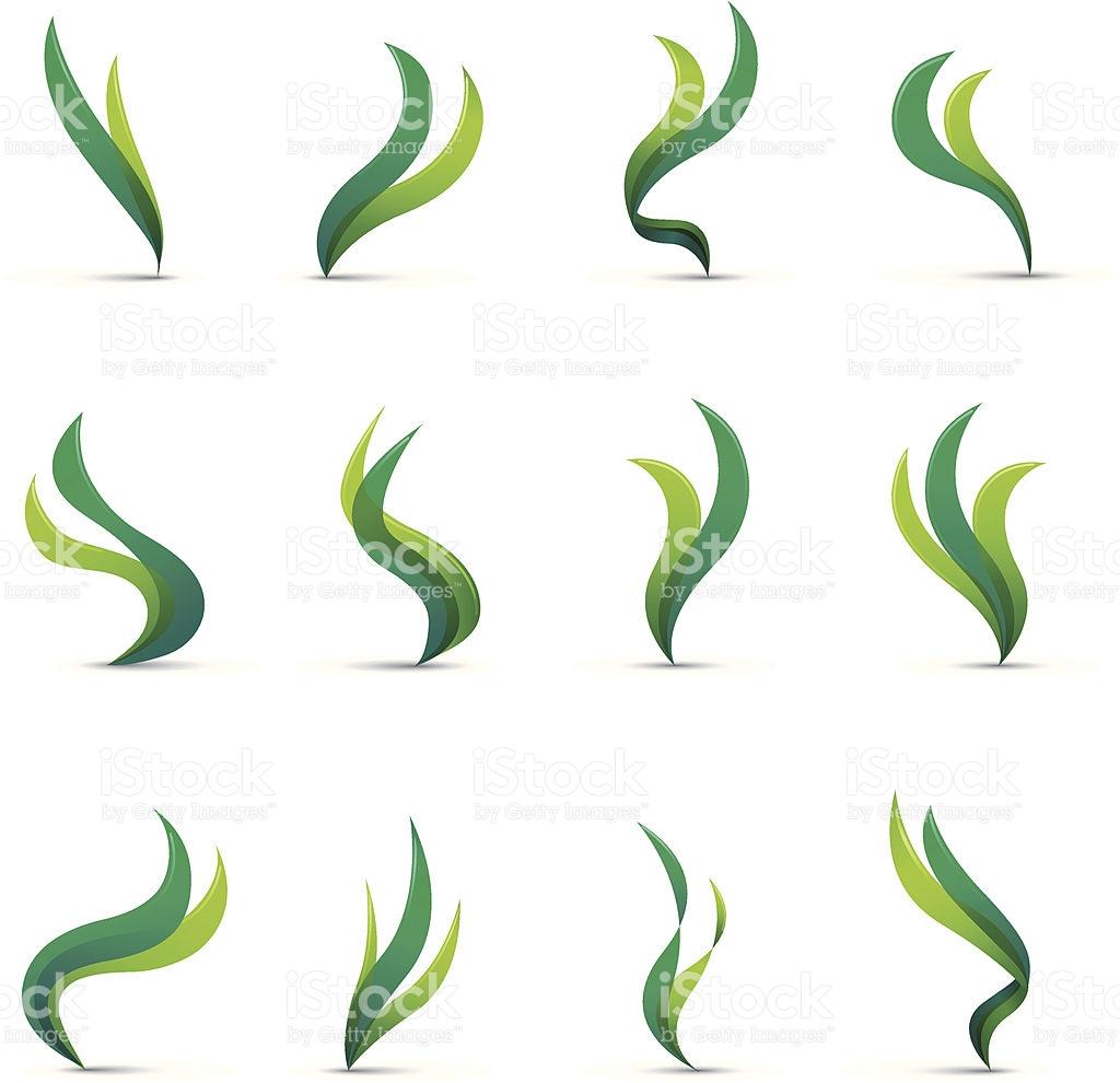 1024x990 Seaweed Clipart Aquatic Plant