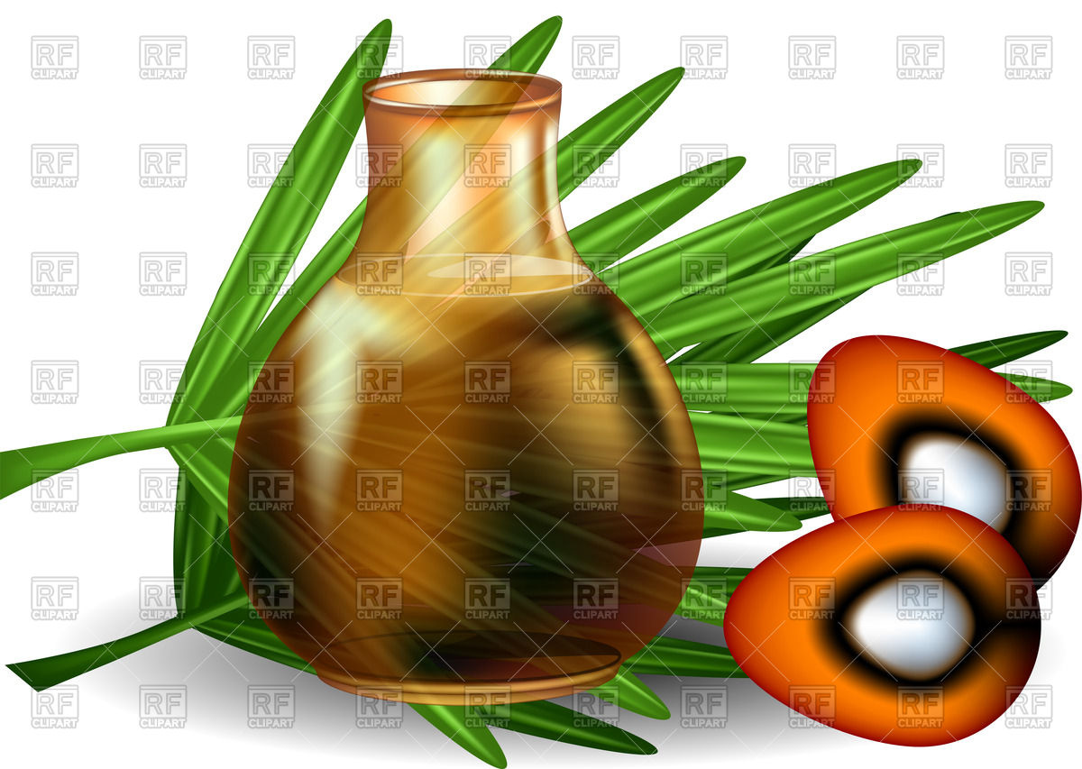 1200x853 Palm Oil With Palm Leaves On White Background Royalty Free Vector