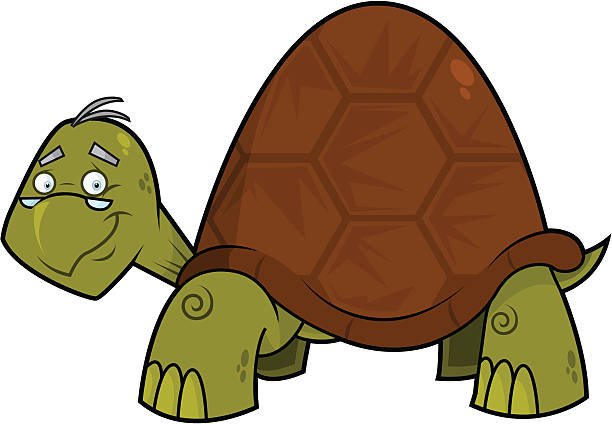 612x424 Old Turtle Clipart Amp Old Turtle Clip Art Images