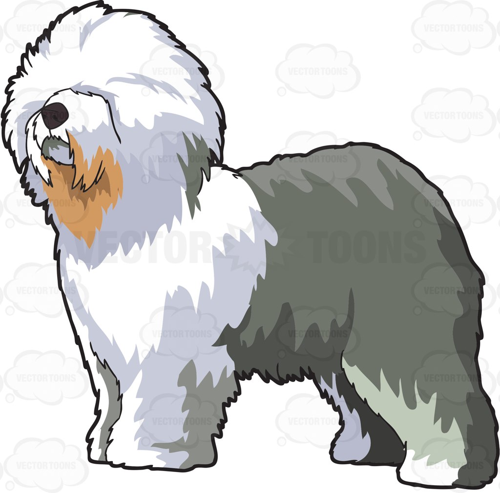 1024x1010 A Fluffy Old English Sheepdog Cartoon Clipart Vector Toons
