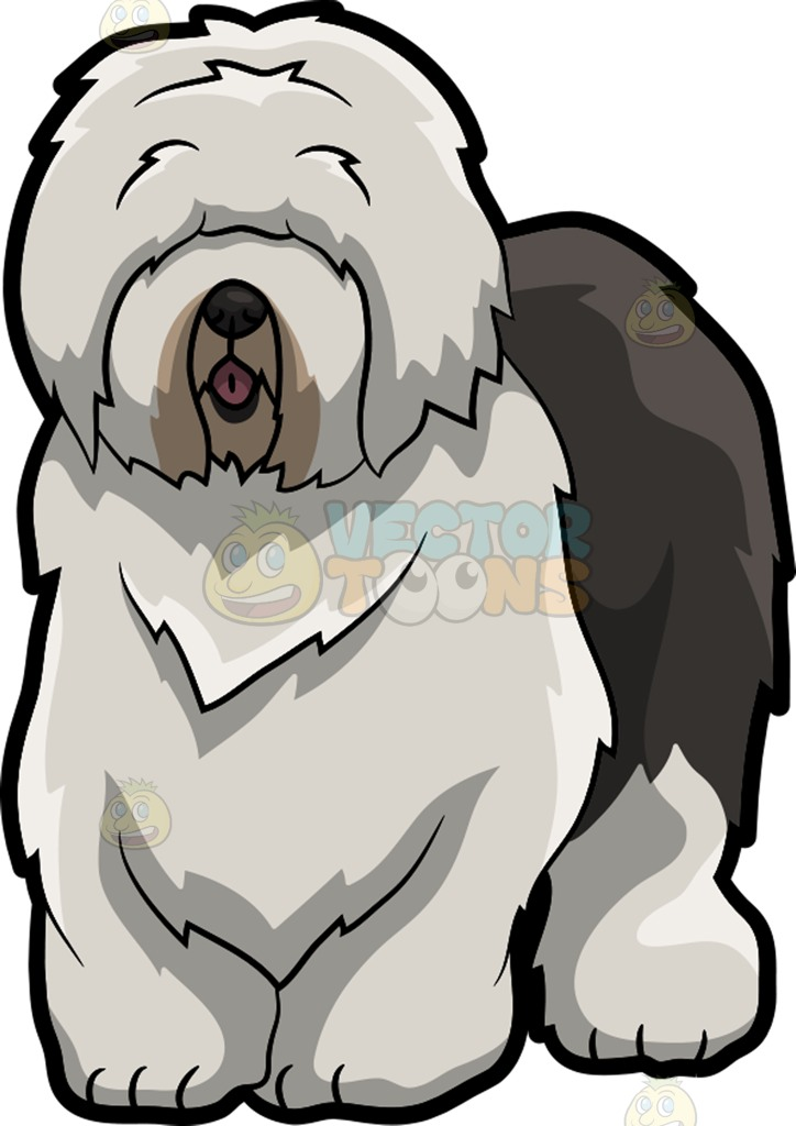 724x1024 An Old English Sheepdog With Long Fringe Cartoon Clipart Vector