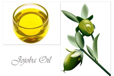 480x322 Olive Oil Clipart Hair Oil