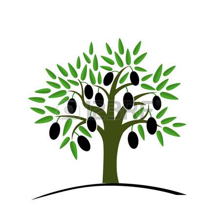 446x450 Olive Tree Clipart Free Download Clip Art