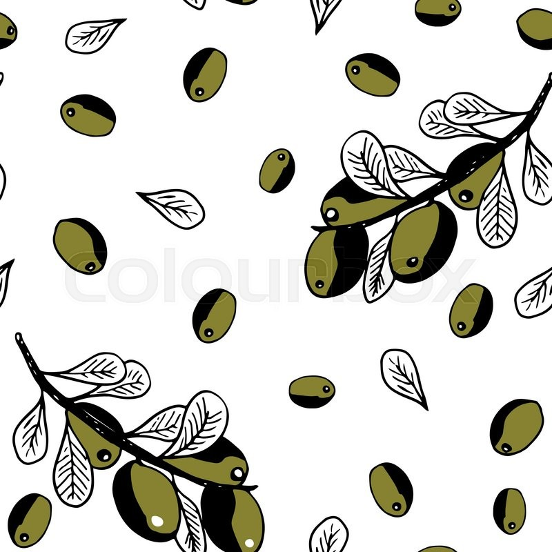 800x800 Texture Clipart Olive Tree