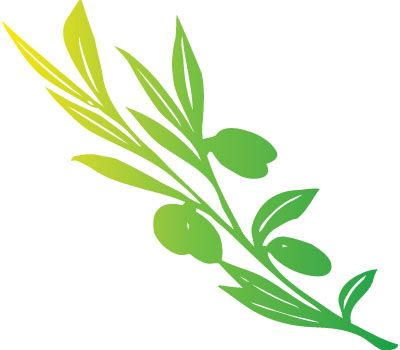 400x350 Coolest Olive Tree Clipart