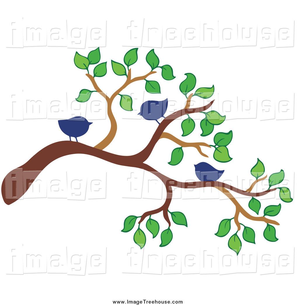 1024x1044 Clip Art Clip Art Tree Branches