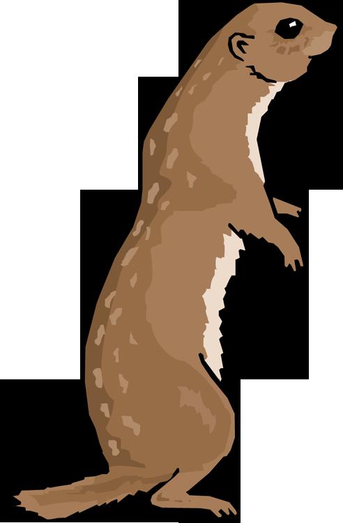 492x750 0 Prairie Dog Clip Art Clipart Fans