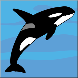304x304 Clip Art Whale Killer Whale Color I Abcteach