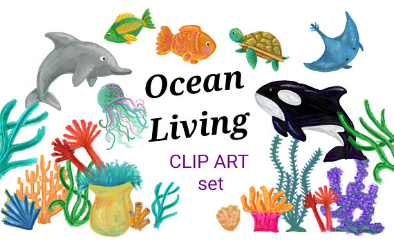 570x356 Digital Acrylic Painted Underwater Clip Art, Hand Painted Coral