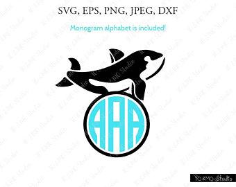 340x270 Killer Whale Etsy