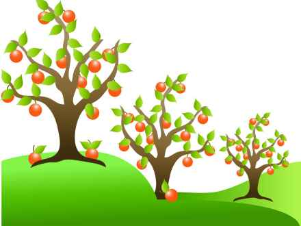 440x330 Fruit Tree Clip Art