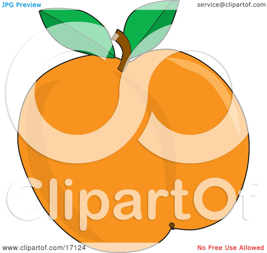 1080x1024 Plump And Juicy Apricot With A Stem And Two Green Leaves, Freshly