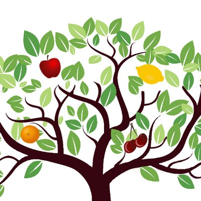 400x400 The Orchard Fruit Company (@theorchardfruit) Twitter