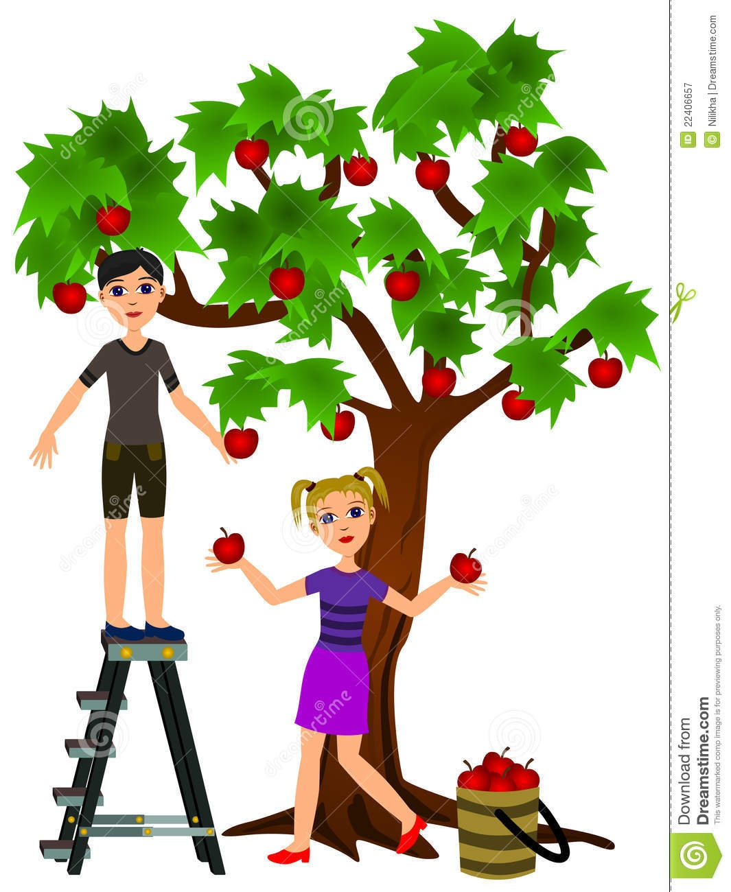 1065x1300 Apple Orchard Clipart Free