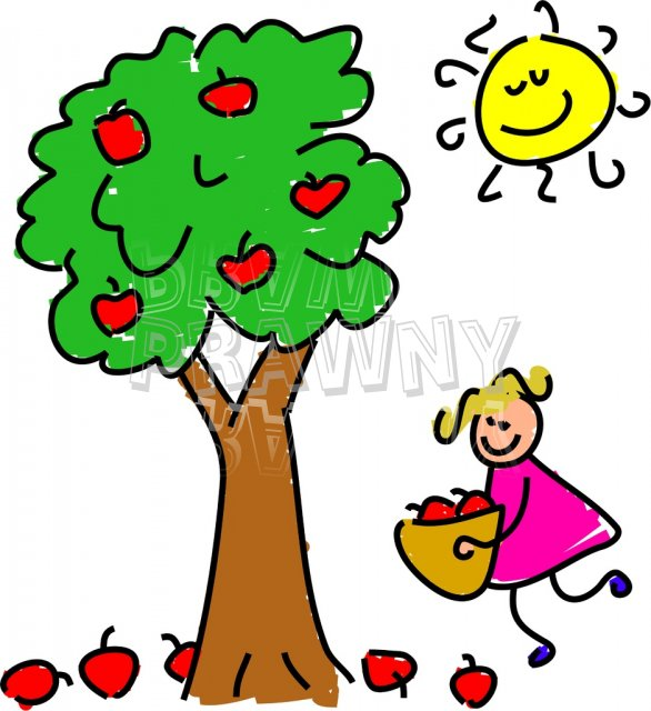 586x640 Apple Picking Clipart