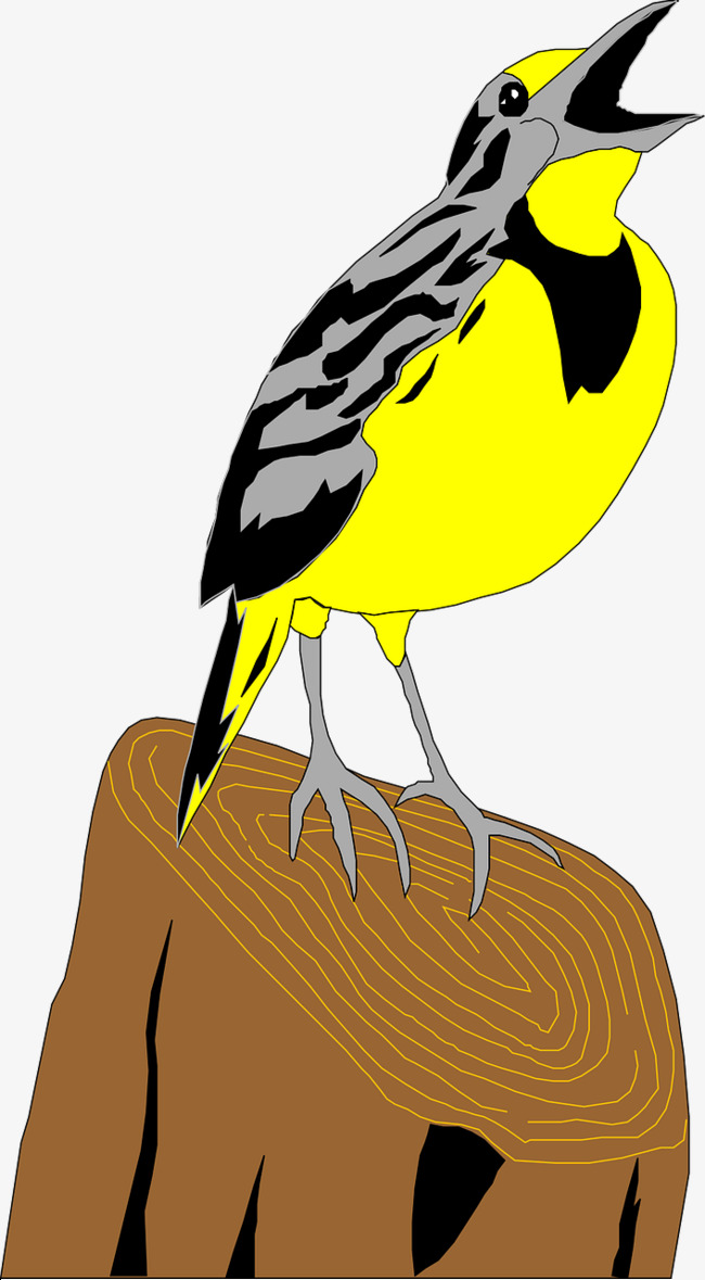 650x1179 Yellow Bird, Yellow, Birds, Animal Png Image And Clipart For Free