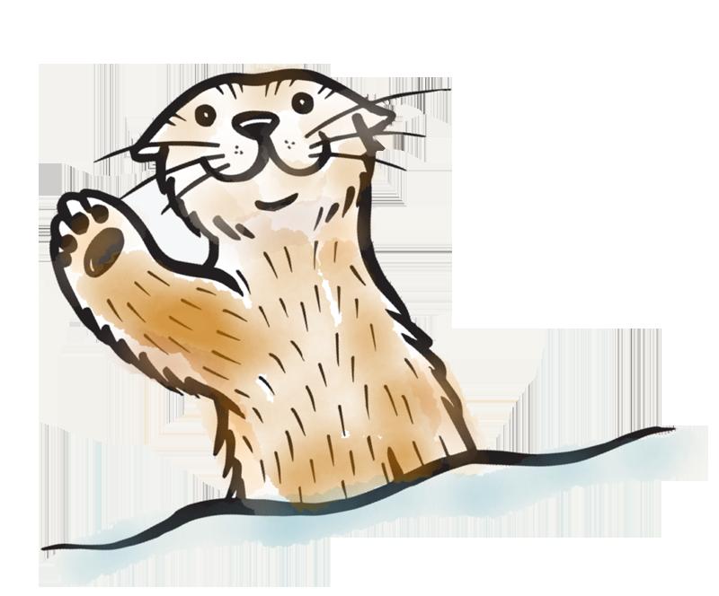 800x664 Sea Otter Clipart Transparent