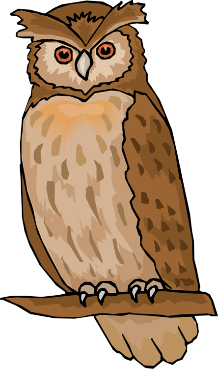 owl clipart at getdrawings com free for personal use owl clipart rh getdrawings com