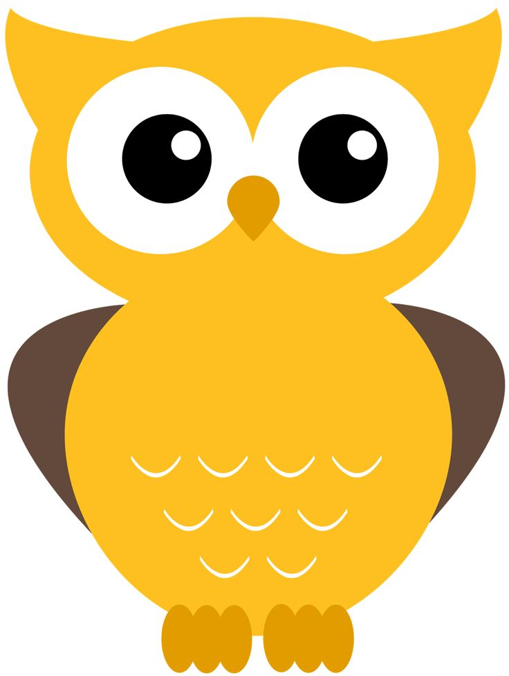 Owl Clipart For Kids